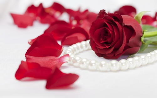 rose-and-pearls